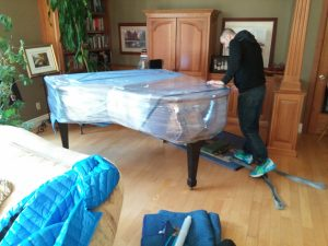 piano movers ottawa team moving a 7' Grand piano from one room to another so new floors could be installed.